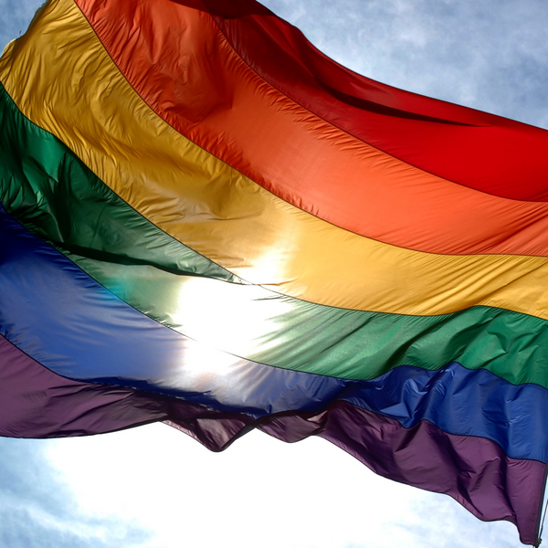 Pride Rainbow flag flapping in the wind (By Ludovic Bertron from New York City, Usa - https://www.flickr.com/photos/23912576@N05/2942525739, CC BY 2.0, https://commons.wikimedia.org/w/index.php?curid=14831997)