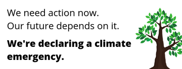 Delcaring a climate emergency graphic